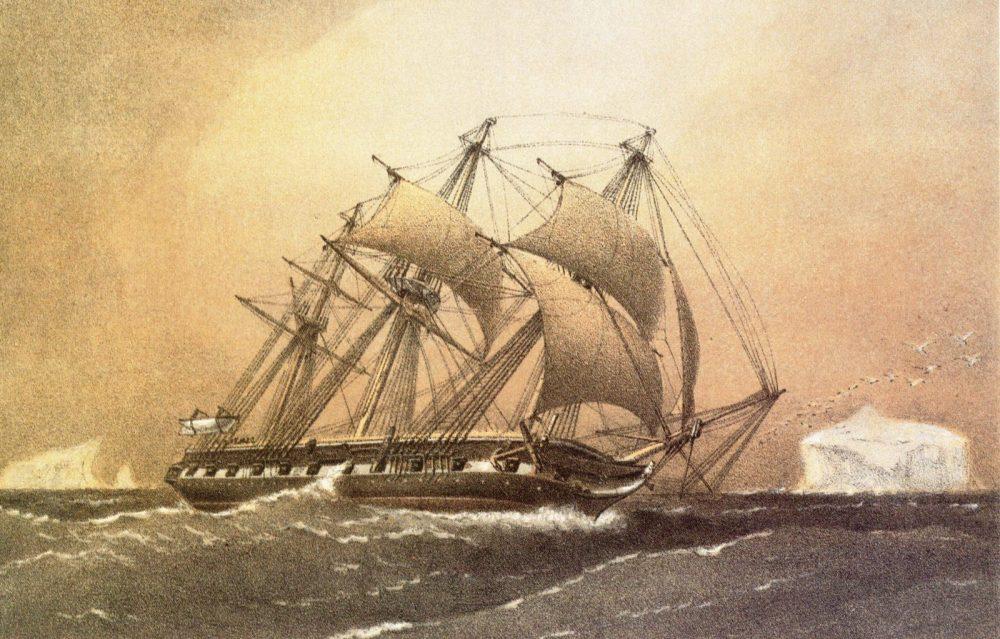 Un mare di canapa