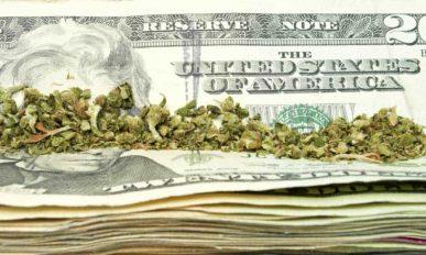 Legalizzare paga. Molto.