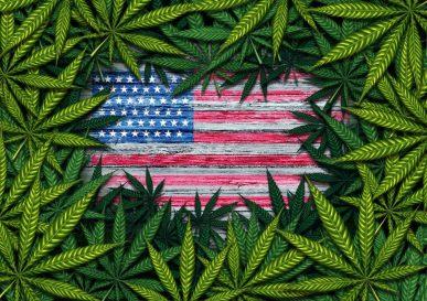 Negli Usa vince la legalizzazione della cannabis. Americani sempre più antiproibizionisti