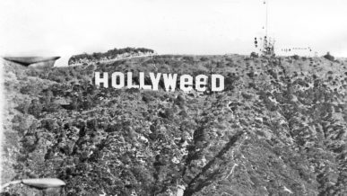 Hollyweed!