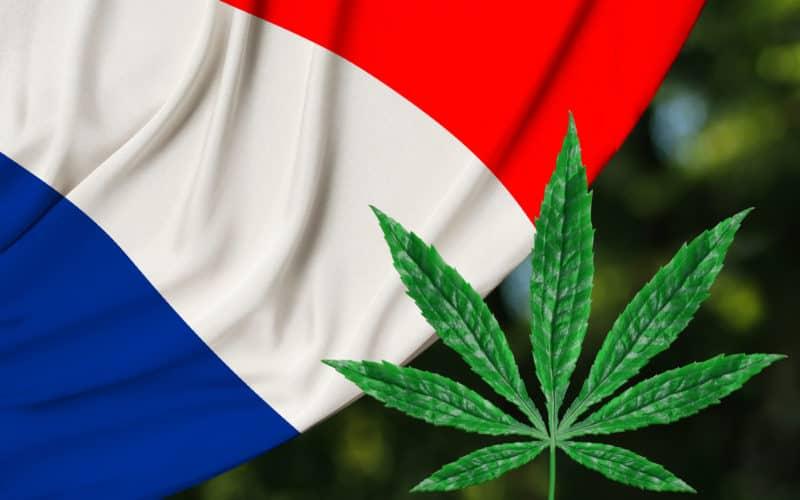 In Francia via alla consultazione online sulla parziale legalizzazione della cannabis