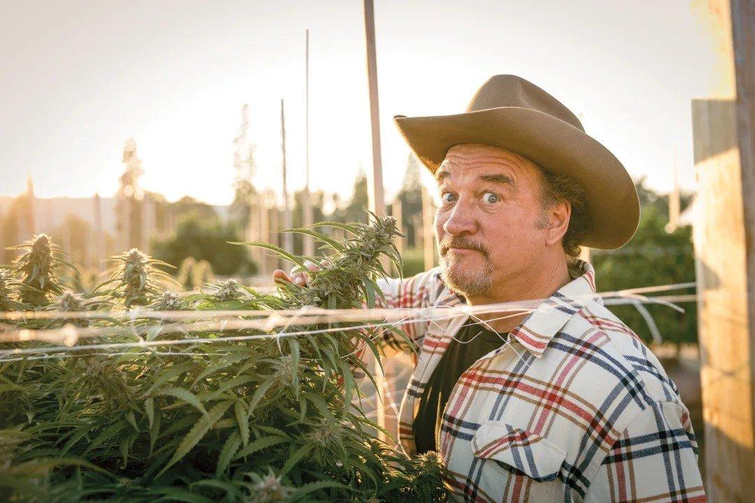 Perché l'attore Jim Belushi ha mollato Hollywood per coltivare marijuana in Oregon