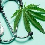Per la prima volta la cannabis in un ospedale in Sicilia per uso terapeutico