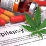 Epilessia: l'estratto di CBD è efficace nei bambini e negli adulti