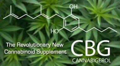 Read more about the article CBG! (non solo CBD)