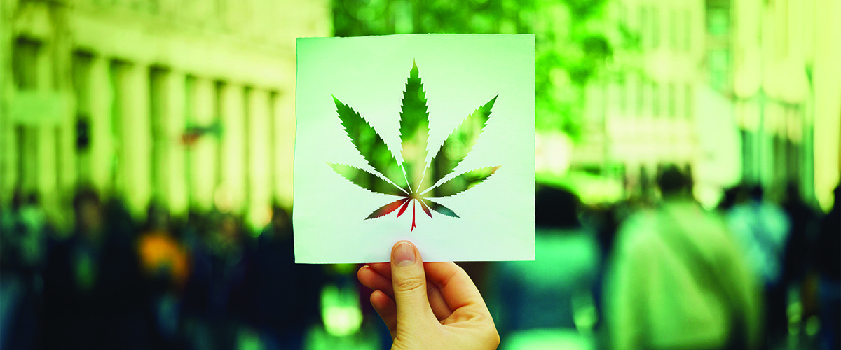 USA – Con la Cannabis legale crollati procedimenti e condanne giudiziarie a livello federale.