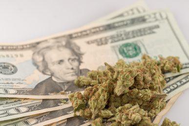 Read more about the article L'Illinois ricava più tasse dalla marijuana che dall'alcool.